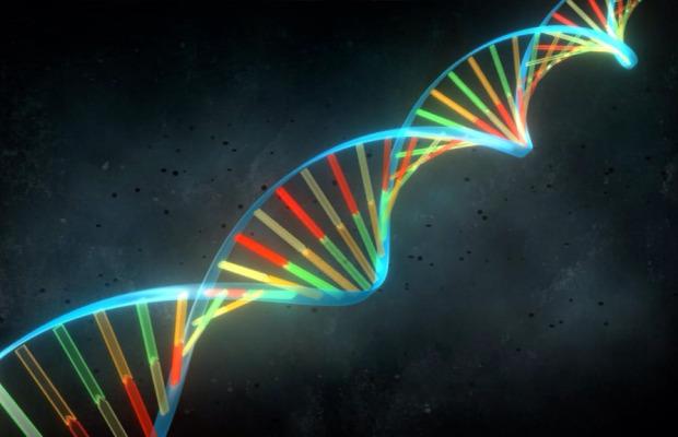 Proyecto Genomics